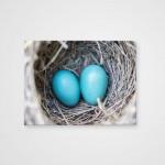 Холст Гнездо