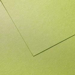 Металлизированный картон